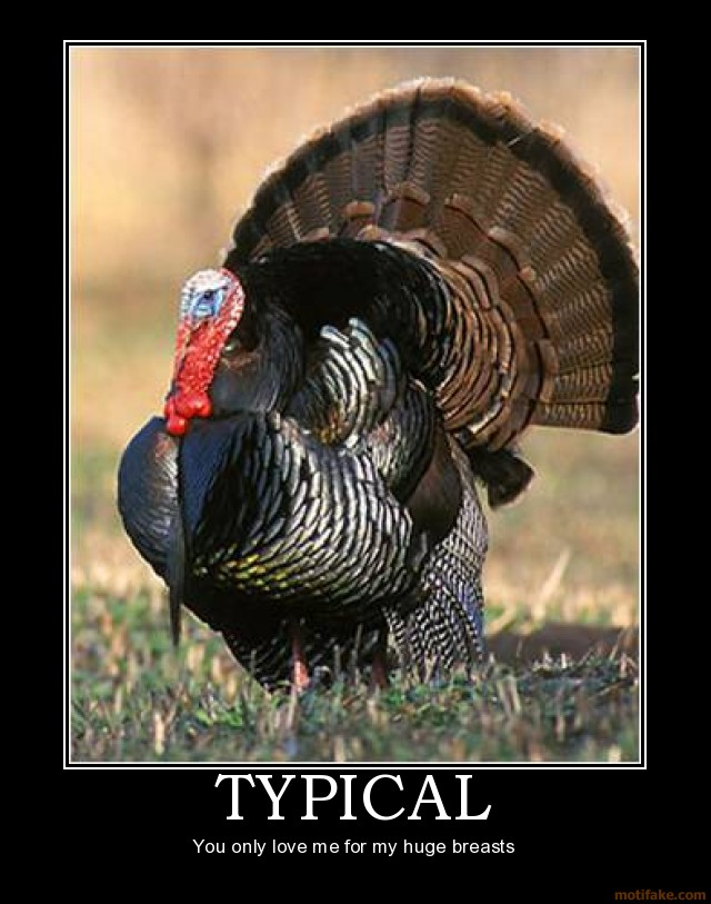 StNOVEMBERThanksgiving-Day-Turkey-2017humorgoogleimageshumor